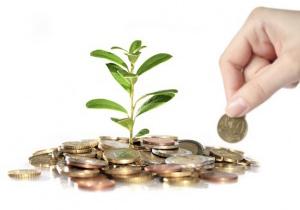 Взять кредит на бизнес на лучших условиях с пфк решение
